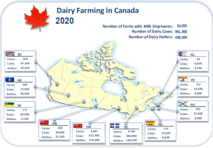 Dairy barns by type in Canada.