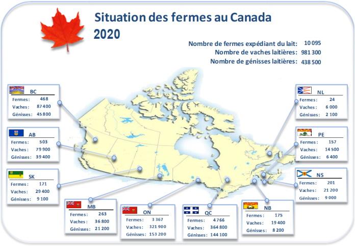Nombre de fermes laitière, vaches et génisses par province